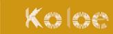 Koloe Bilgisayar – Uygun ve Yüksek Performanslı Bilgisayar Sistemleri